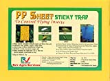 Rev Agro Yellow Blue Sticky Trap (Pack of 25 Pieces)