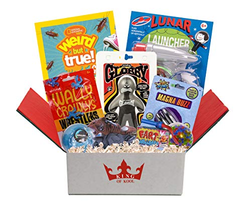 Beyond Bookmarks King of Kool Boy's Fun Boredom Buster, Summer Camp Care Package or Get Well Gift