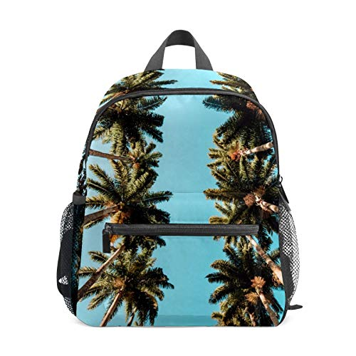 Mochila estudiantil bolsa para niños y niñas, palmeras, cielo azul, informal, bolsa de viaje organizadora, regalo
