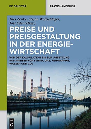 Preise und Preisgestaltung in der Energiewirtschaft: Von der Kalkulation bis zur Umsetzung von Preisen für Strom, Gas, Fernwärme, Wasser und CO2 (De Gruyter Praxishandbuch)