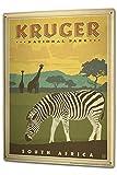 BNIST Globetrotter Kruger National Park Südafrika Zebra