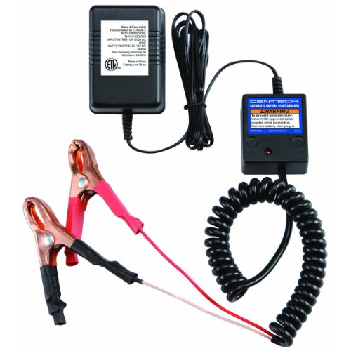 Automatic Battery Float Charger from TNM