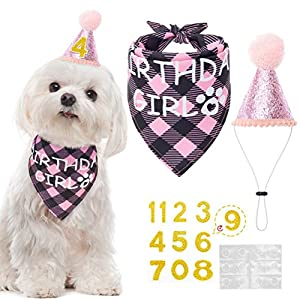 Mihachi Dog Birthday Bandana with Hat – Party Supplies Birthday Set for Pet Puppy Cat for Birthday Party Pink