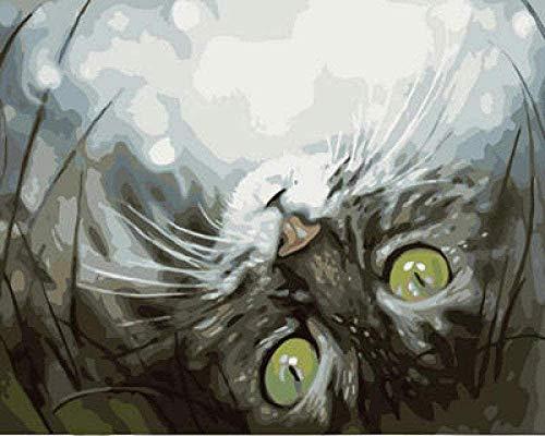 DIY Digital Malerei Erwachsene Kinder Tier Katze Spielzeug, gemalt durch Zahlen mit Pinsel und Acrylfarbe Home Decoration Geschenke WANGHN