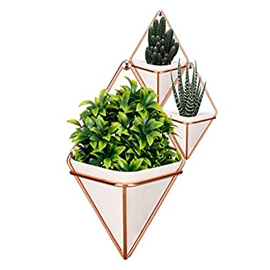 LANMU Hanging Container,Handcrafted Wall Vases,Geometric Wall Decor,Wall Vase Hanging,Plant Holder for Air Plants/Succulent Plants/Artificial Flowers/Mini Cactus/Geometric Plants(1 Large & 2 Small)