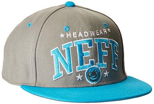 NEFF Team Adjustable Cap Casquette Mixte Adulte, Gris, FR : (Taille Fabricant : U)