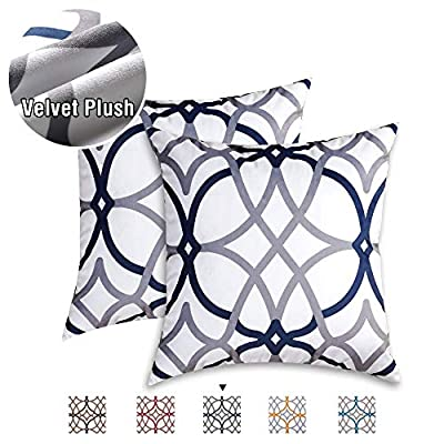 H.VERSAILTEX 2 Pack Square Velvet Pillow Covers Soft Throw Pillow Covers for Couch/Bed/Bedroom 18 x 18 Inch 45 x 45 cm