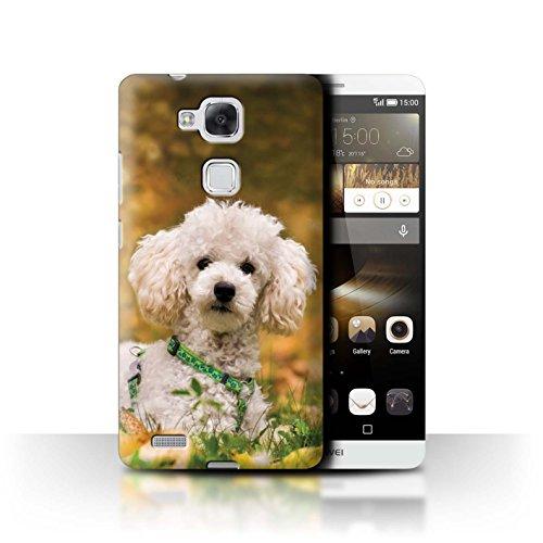 Hülle Für Huawei Ascend Mate7 H&/Eckzahn Rassen Pudel/Poodle Design Transparent Ultra Dünn Klar Hart Schutz Handyhülle Case