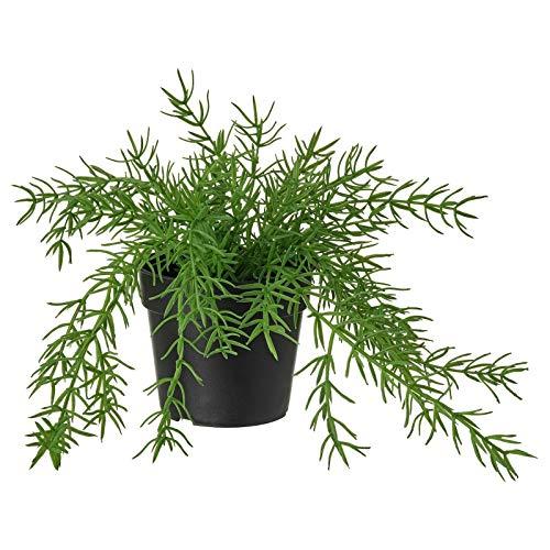 Ikea Fejka Künstliche Topfpflanze, Dekoration für drinnen und draußen, Mistelzweig-Kaktus, 9 cm