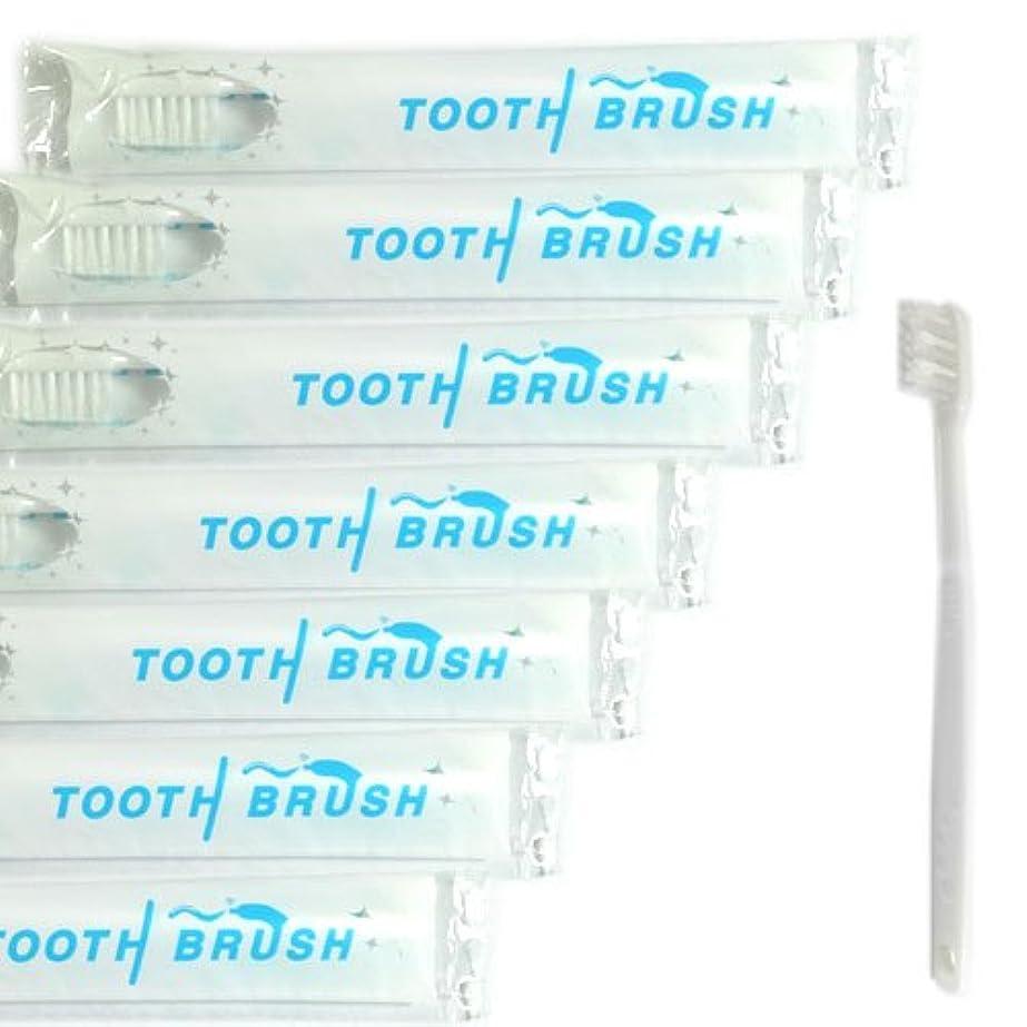 カレンダー漂流ティッシュ業務用 使い捨て(インスタント) 粉付き歯ブラシ(500本組)