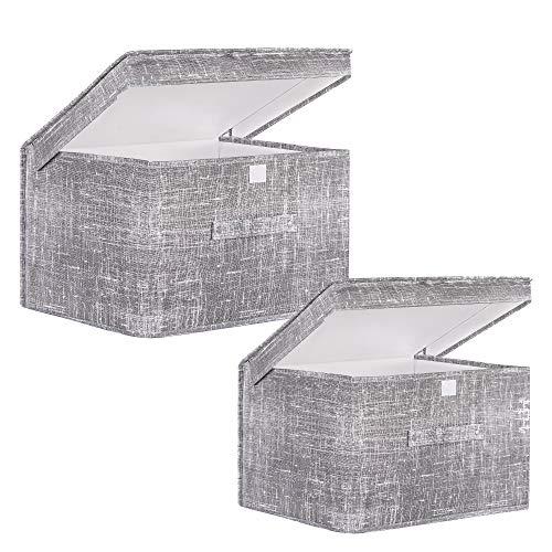 SPRINGOS Caja de Material Set | contenedor con Tapa | Gris | Cajas de Almacenamiento Caja de Juguetes | Sistema de organización | clasificación (30x50x40 cm + 25x40x30 cm, Gris + Gris)
