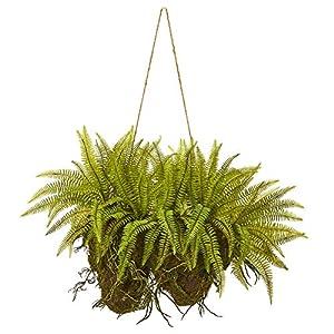 Silk Flower Arrangements Nearly Natural 24in. Forest Fern Artificial Hanging Silk Plants, Green