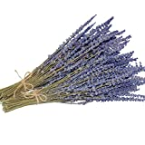 Dried Lavender Flowers Bundle - 2 Bunches Dried Lavender, Ideal Home Fragrance Products for Wedding, Party, Photography, Flower Arrangements & DIY Projects,16 Inches Long