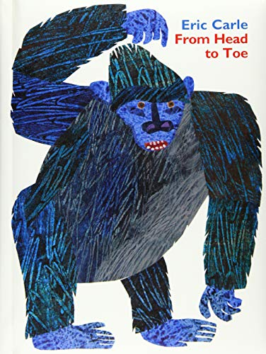From Head to Toe Padded Board Book