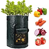 ANPHSIN 2 Pack 10 Gallon Potato Grow Bags with Flap and Handles -Fabric Plant Planter Pots for Tomato Planting Vegetable Growing Outdoor Container