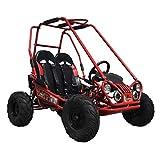 X-PRO 163cc Kid Size Go Kart Youth Go Kart Dune Buggy Kids Go Cart Gokart 2 Seater Go Kart (Red)