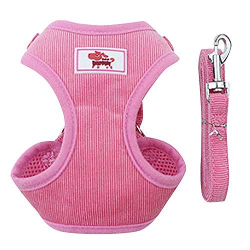 Balock Schuhe Haustierleine+Brustgurte für kleine Hunde,Verstellbare Haustier Hund Katze Cord Gurte,Mesh Weste Leine,Teddy Weste Haustier Hund Brustgurt (Rosa, S)