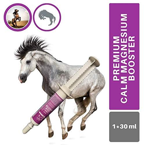 EMMA® Magnesium Pferd I Calm Booster I zur Beruhigung Nerven I L-Tryptophan Aminosäuren Paste I Angst Stress schreckhaftes Pferd I unterstützt Gelassenheit bei nervösen Pferde Pony 30ml