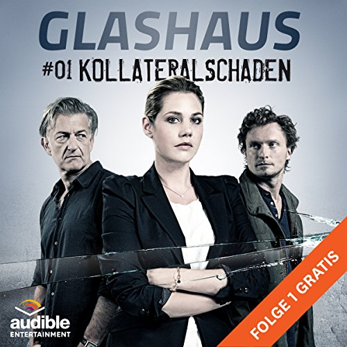 Kollateralschaden audiobook cover art