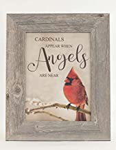 Summer Snow Cardinals Appear When Angels are Near Heaven Pussywillow Decor Sympathy Art..