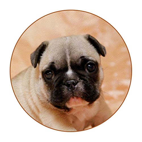 Coasters for Drinks Cute Animal Dog Set of 6 Coasters, Microfiber leather, Protect Against Water Marks or Damage - Fit All Cups, 3.4' Size Fits, Colored Coasters
