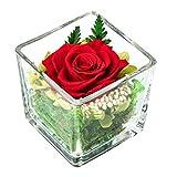 Infarrow - Infinity Rose im Glas; Konservierte Rose über 3 Jahre haltbar, ewige Pflanzen in Würfel Vase Inkl. Geschenkbox; Tischdeko Blumen; Rosenkopf Gesteck für Hochzeit, Zuhause oder als Geschenk
