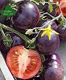 CIOLER Seed House - 20pcs Raras Semillas Tomate Cherry azul ecológica Huerto Planta tomates de uva Semillas Ecológicas Jardinería Semillas de verduras perennes resistentes