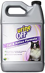 Review: Urine Off - Best Enzyme Cleaner To Remove Cat Urine Stains