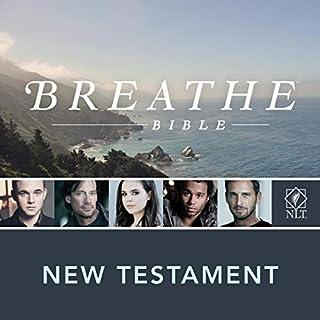 Dramatized Audio Bible - New International Version, NIV: Complete