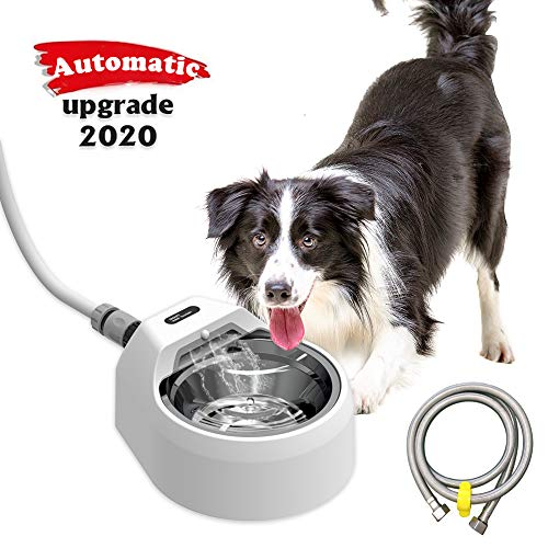 BARHOMO Automatic Dog Water Bowl Dispenser Indoor/Outdoor,Auto Refilling Cat Water Fountain,Battery Operated Large Pet Stainless Steel Dish Without Step on (White)