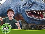 Dinosaur Hide and Seek
