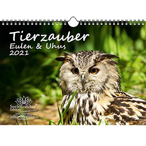 Tierzauber Eulen und Uhus DIN A4 Kalender für 2021 - Geschenkset Inhalt: 1x Kalender, 1x Weihnachts- und 1x Grußkarte (insgesamt 3 Teile)