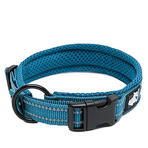 TRUE LOVE Dog Collar Reflective Premium Duraflex Buckle,High Grade Nylon Webbing No Choke Basic Collars Truelove TLC5011(Blue,M)