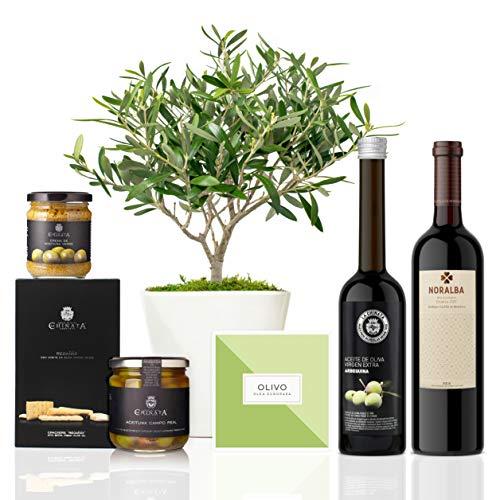 Lote Gourmet Regalo Atenea con árbol olivo natural 38 cm en maceta de 16 cm diámetro, guía de cuidados, AOVE, crema de aceitunas, regañás, aceitunas y vino tinto ecológico entregado en caja de regalo