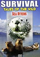 Survival: Tales of the Wild - Sea Otters [DVD] [Import]