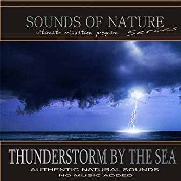 Thunderstorm By The Sea (Sounds of Nature)