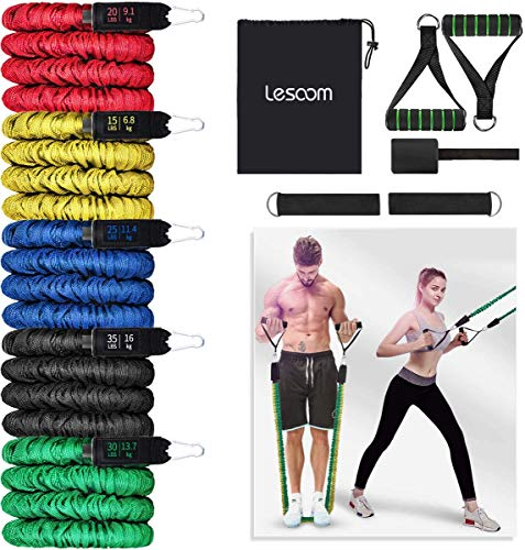Resistance Bands Set (11pcs), Exercise Bands with Handles, Door Anchor, Heavy Duty Protective Nylon Sleeves Anti-Snap for Fitness, Physical Therapy, Home Workouts, Elastic Exercise Bands for Men Women