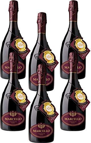 6 Bottiglie di Ariola Marcello Lambrusco Langhirano Dry Vino Spumante Rosso