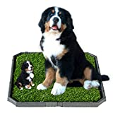 Artificial Grass Bathroom Mat for Dog Puppies Pee Pad Potty Indoor...