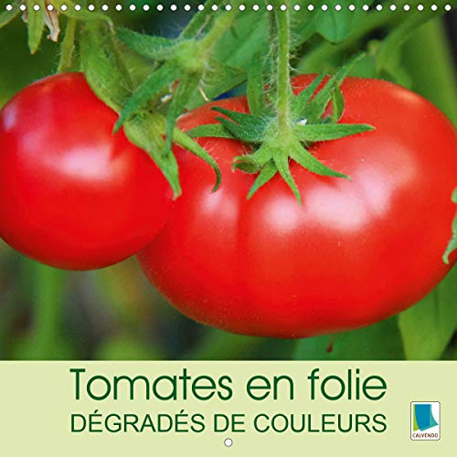 Tomates en folie – dégradés de couleurs (Calendrier mural 2021 300 × 300 mm Square)