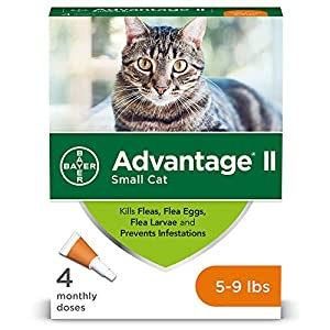Advantage II Flea Treatment and Prevention for Small Cats, 5-9...