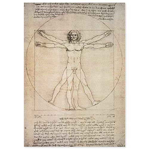 JUNIWORDS Poster, Leonardo da Vinci, Der vitruvianische Mensch, Proportionszeichnung nach Vitruv, 40 x 56,5 cm