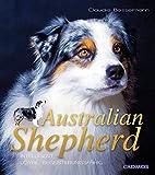 Australian Shepherd: Intelligent, loyal, begeisterungsfähig