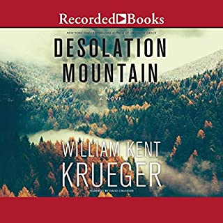 Desolation Mountain audiobook cover art