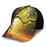 Photo de Hip Hop Sun Hat Baseball Cap,Majestic Mighty Oak Tree with Largely Broader Leaves Forest Sun Rays Nature,for Men&Women