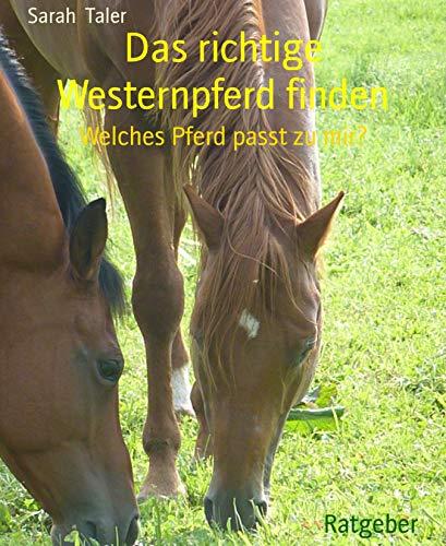 Das richtige Westernpferd finden: Welches Pferd passt zu mir?