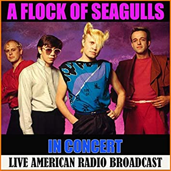 A Flock of Seagulls in Concert (Live)