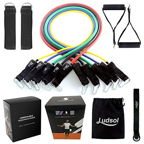 Ludsol Resistance Bands Set Workout Bands,11 PCS with Exercise Tube Bands,Door Anchor,Legs Ankle Straps,Waterproof Carry Bag and Exercise Guide Booklet-for Resistance Training,Physical Therapy