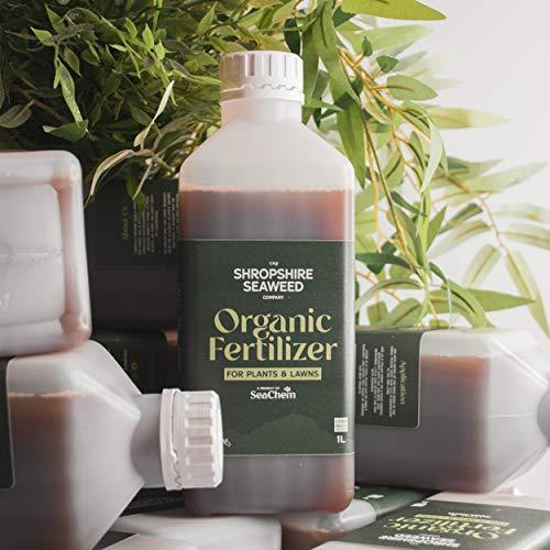 Fertilizante / abono orgánico de algas marinas - 1L - Otros volúmenes disponibles