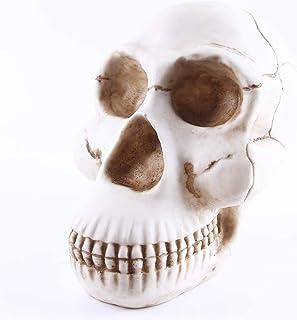 Gorilla Skull Resin Model Animal Skull Model Handicraft Skull Skull Home Accessories (Organ Model Required)